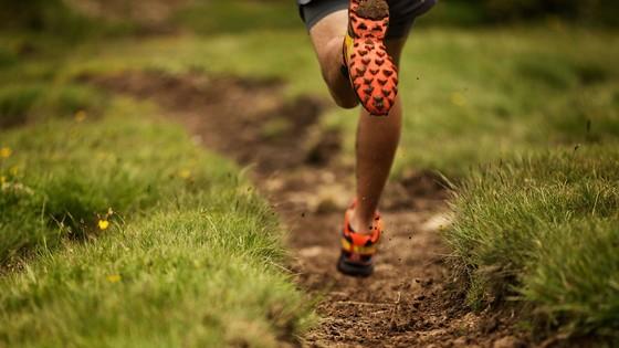 Trail Runnin