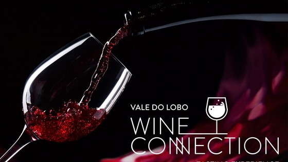 Wine Connection Tasting Experience