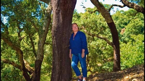 Caminhada de conecção com a natureza